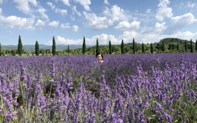 Studieresa i Provence